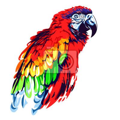 Картина Красный попугай