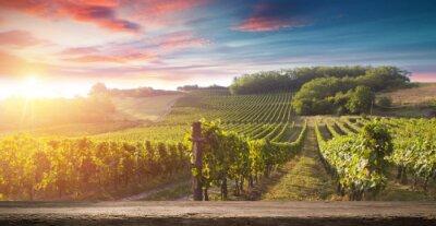 Картина Бутылка красного вина и бокал на деревянной бочке. Красивый фон Тосканы