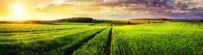 Картина Сельский пейзаж закат панорама