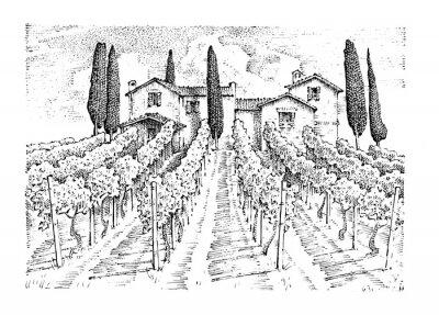 Картина деревенский виноградник. сельский пейзаж с домами. солнечный тосканский фон. полей и кипарисов. заготовки и стога сена. выгравированная рука, нарисованная в старом эскизе и винтажном стиле для этикетк
