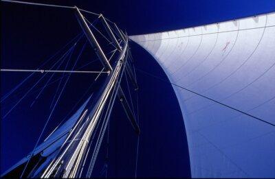 Картина паруса