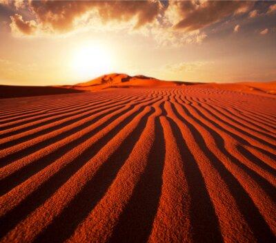 Картина Песчаная дюна
