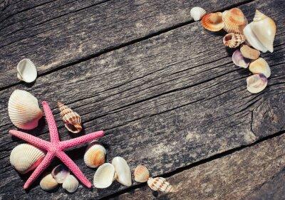 Картина Морские раковины на деревянных фоне