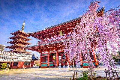 Картина Сэнсодзи Храм в Асакуса, Токио, Япония