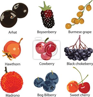 набор различных ягод