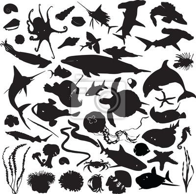 набор силуэтов морских обитателей