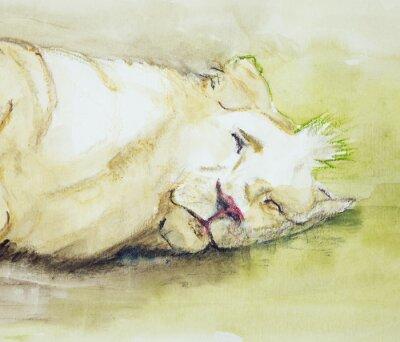 Картина Спящий лев. Техника прикладывая вблизи краев дает эффект мягкой фокусировки благодаря измененному шероховатости поверхности бумаги.
