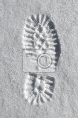 снег единственным отпечаток