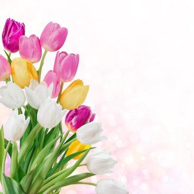 Картина Весна фон