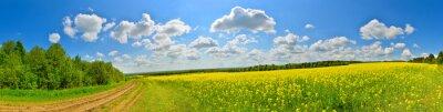 Картина Весенний цветок поле