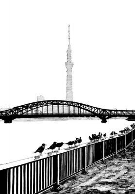 Картина Сумида вид моста