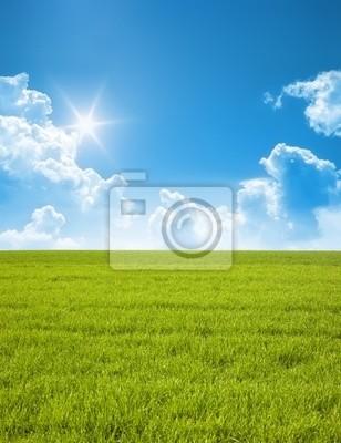 Картина лето