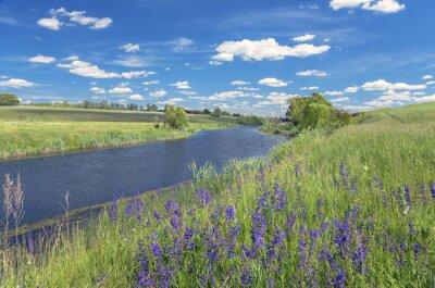 Картина Летний пейзаж с рекой