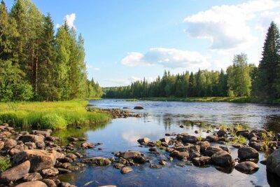 Картина Летом река