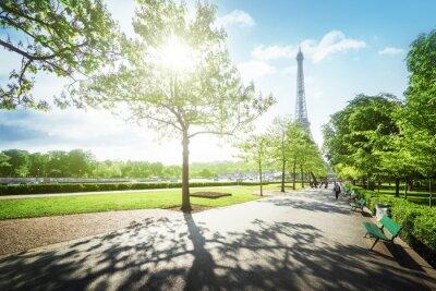 Картина солнечное утро и Эйфелева башня, Париж, Франция