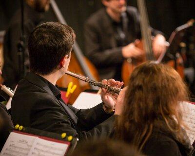 Картина Симфонический оркестр выполнения.