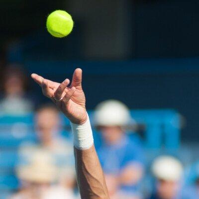 Картина Теннис Подавать