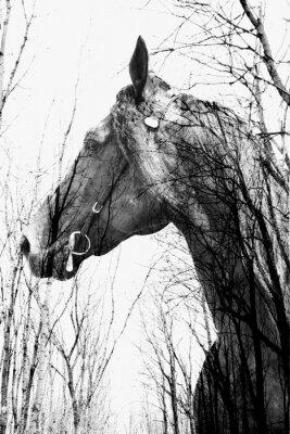 Картина Лес внутри лошади ина искусства, multiexposition