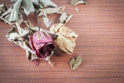 Картина Последнее Валентина розы.