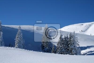 tiefverschneite Winterlandschaft
