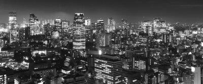 Токио ночью панорамы, б & W