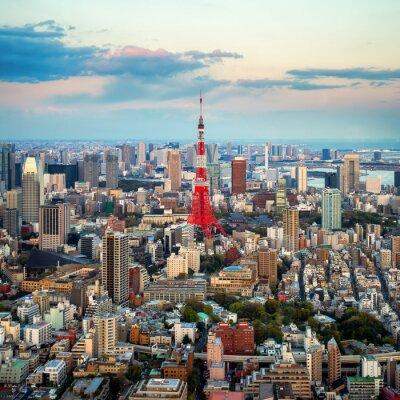 Картина Токио вид на город виден на горизонте