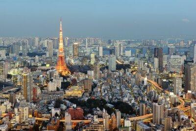 Картина Токио; Япония -January 14; 2016: Ночной вид на Токио Skyline с знаковых Tokyo Tower в фоновом режиме.