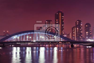 Река Токио