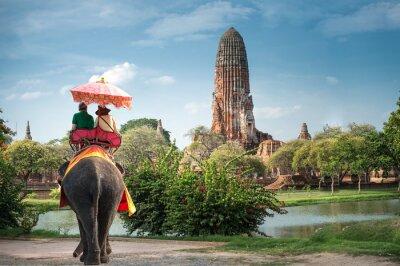 Картина Туристы на слоне езды тур древнего города Ayutaya, Таиланд