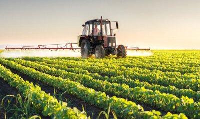 Картина Трактор распыления сои