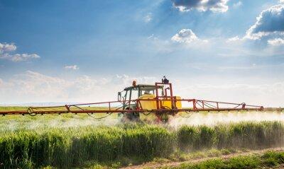 Картина Трактор распыления поле пшеницы
