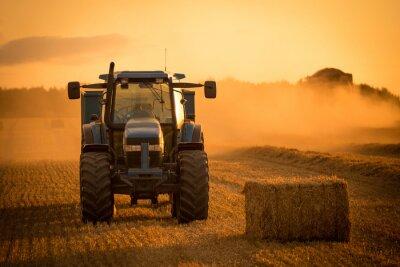 Картина Уборка урожая трактора