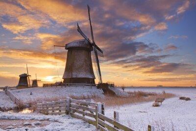 Картина Традиционные голландские ветряные мельницы в зимний период на рассвете