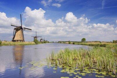 Картина Традиционные голландские ветряные мельницы в солнечный день на Киндердейк