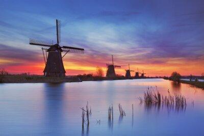 Картина Традиционные ветряные мельницы на рассвете, Kinderdijk, Нидерланды