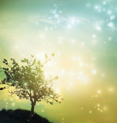 Картина Tree silhouette at twilight