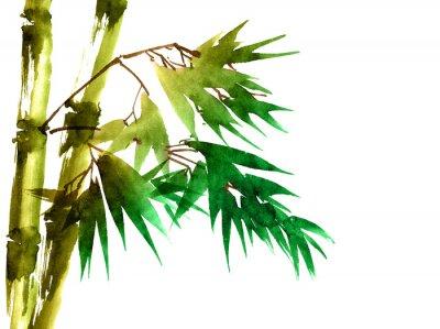 Картина Тропический бамбук с листьями