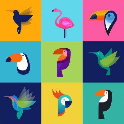 Картина Тропические птицы - набор векторных иконок