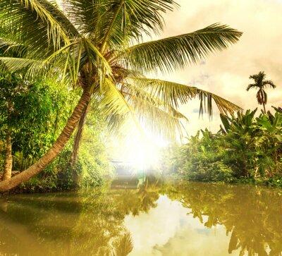 Картина Тропический река