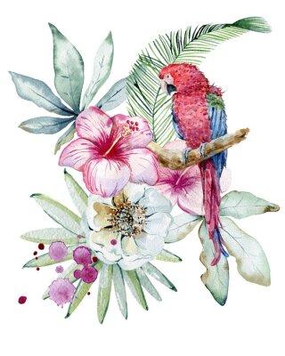 Картина Tropical watercolor illustration