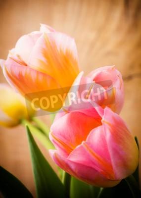 Картина Тюльпаны, цветочный фон.