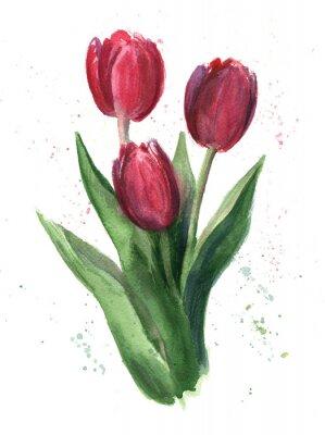 Картина Тюльпаны, акварель