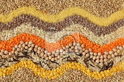 Различные семена и зерна закрыть