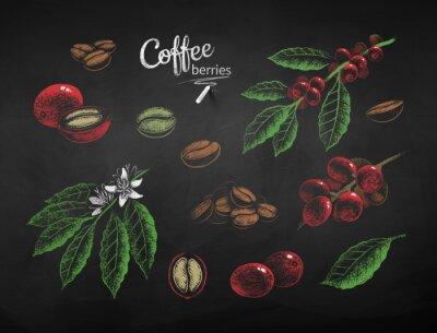 Картина Vector chalk drawn set of coffee illustrations