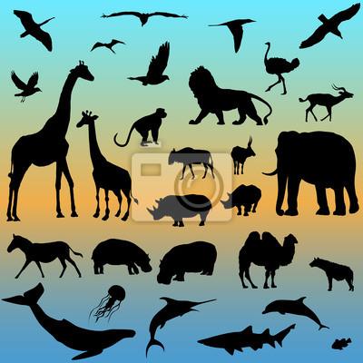 векторный набор животных коллекции