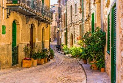 Картина Вид на романтической улице старой средиземноморской деревни в Испании