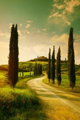 Картина Vintage Tuscany countryside landscape