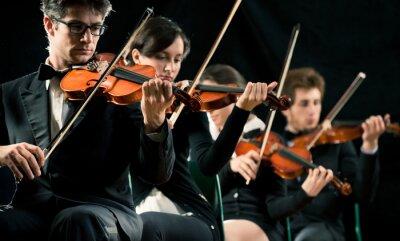 Картина Скрипка оркестр, исполняющий