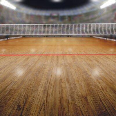 Картина Волейбол Арена со зрителем и скопировать пространстве