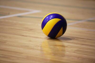 Картина Волейбол мяч на пол